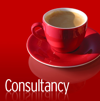 Consultancy en interim
